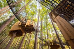 Hideaway Woods at Museum of Life and Science in Durham #HideawayWoods #MuseumOfLifeAndScience #Durham #NC