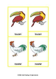 Montessori Three Part Cards - Birds