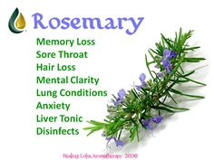 Rosemary is one of my all time favorite oils! I use it to wake me up in the mornings! It also has strong antiviral, antifungal, and antibacterial properties. ~Jann'e