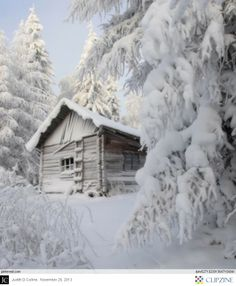 a winter dream of a snow covered cabin Winter Szenen, Winter Cabin, Winter Love, Snow Cabin, Winter White, Snow White, Winter Months, Winter Season, Winter Mountain