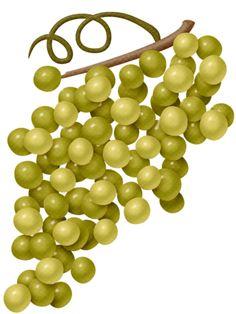 lliella_AutumnHarvest_grapes2.png