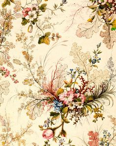 Beautiful floral flower butterfly aged vintage pink white red blue pattern wallpaper background