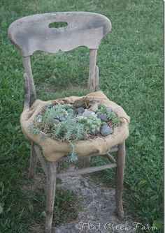 """""""What???""""… you may ask?? I turned an old chair with a worn out seat into a container for some of my favorite plants: Succulents. A Succule..."""