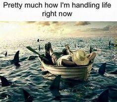 Handling Life