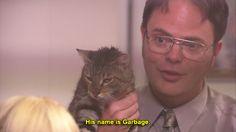 Dwight <3