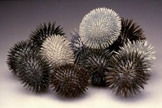jennifer maestre - sea urchins out of colored pencils
