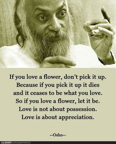 Love is not about possession. Love is about appreciation <3