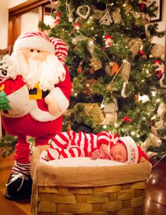 Sesion de fotos. Arbol navidad. Bebe regalo de navidad