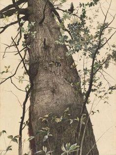 Andrew Wyeth - The Oak