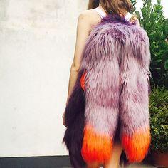 #fly #wings #colors #animalfriendly #cherfur