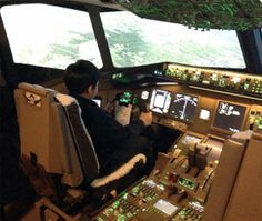 Field Trips, Toronto, Pilot, Aviation, Learning, Air Ride, Studying, Pilots, Teaching