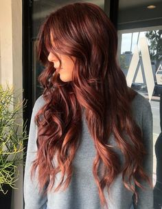 Reddish Brown Hair with Highlights