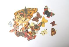 Butterfly die cut style embellishments: by PinkFlamingoEphemera