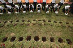 Biodegradowalne urny w Chinach.