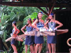 DISNEY WORLD POLYNESIAN LUAU   Spirit of Aloha Luau!   Flickr - Photo Sharing!