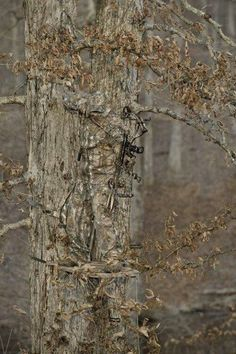 camouflage skill level: -Users complite-  - funny pictures #funnypictures