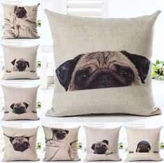 New Style 'Its A Pug's World' Cushion Covers | Wrapped Direct