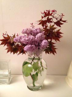 Minimalist Backyard floral arrangements (zen)