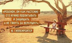 Доктор психологических наук, профессор МГУ им. М. В. Ломоносова Юлия Борисовна Гиппенрейтер знает, что нужно делать, чтобы и дети, и их родители были счастливы. Вот подборка ее высказываний: Про воспи…