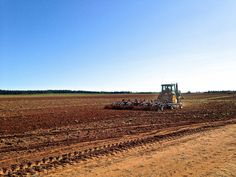 Skies of blue and fields of red. Preparing the ground to be rowed.