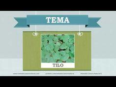 Beneficios, nutrientes y propiedades del tilo. Más información en: http://www.remediocaseronatural.com/comidas-sanas-beneficios-tilo.htm