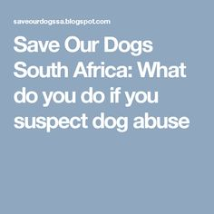 Save Our Dogs South Africa: What do you do if you suspect dog abuse