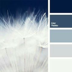 Monochrome dark blue color palette reminds of mystery of the sky before a thunderstorm. Transition from deep dark blue color to pure white is contrast and at the same time softened with pastel shades of blue. Perfect color for the interior of bathroom Blue Colour Palette, Color Palate, Dark Blue Color, Colour Schemes, Color Combos, Blue Grey, Paint Schemes, Color Schemes With Gray, Colours That Go With Grey