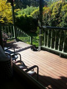the veranda Outdoor Furniture, Outdoor Decor, Bench, Patio, Home Decor, Decoration Home, Terrace, Room Decor, Porch
