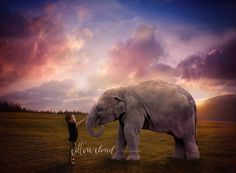 Child and elephant imaginary photography creative art composite by Courtney Anderson - Cotton Cloud Photography Sydney Australia