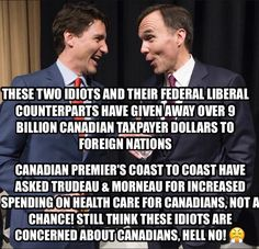 N/A Political Memes, Politics, Liberal Memes, Truth Hurts, It Hurts, Fun Signs, Leadership Tips, Question Everything, Justin Trudeau