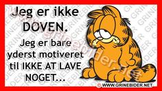 Sådan kan jeg have tidligt mandag morgen. Garfield Quotes, Quote Of The Week, Sarcastic Quotes, My Mood, Funny Signs, Funny Faces, Wise Words, Quotations, Funny Pictures
