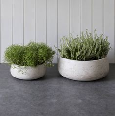 set of two cement planters by all things brighton beautiful | notonthehighstreet.com