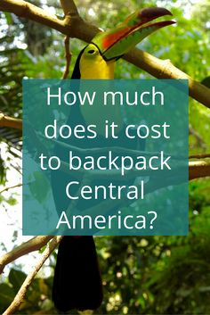 How much does it cost to backpack Central America?