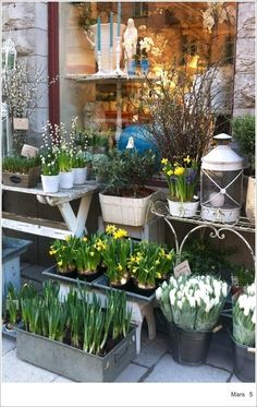 Swedish flower shop