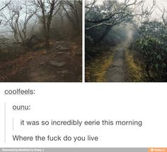 I want to go there. Who wants to explore with me?!