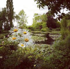Jardins incr (Foto: Instagram/ Reprodu).  Jardins de Claude Monet