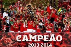 Benfica Campeão Nacional - 1 (© LUSA MANUEL DE ALMEIDA)