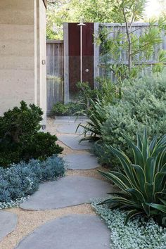 Modern garden design: Side Yard Garden leads to outdoor shower.
