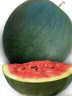 Florida Giant Watermelon Seeds