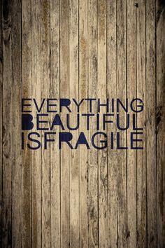 Everything Beautiful Is Fragile  by ani keshishyan