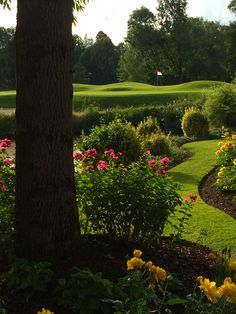 Green Loch 8 im Golfclub Gut Altentann