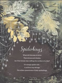 lovely collection of seasonal poetry | nicola davies