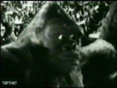 Throwback Thursday: the WOR-9 Thanksgiving Monster Movie Marathon!!! | Eric Robert Nolan, Author