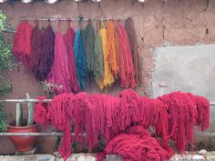 Yarns dyed in dye workshop near Cuzco PERU Andes Peru, Indigenous Knowledge, Peruvian Textiles, Yarn Organization, Inca Empire, Cusco Peru, Yarn Stash, Hand Dyed Yarn, Art Images