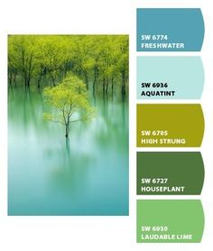 Instantly turn any picture into a palette with ColorSnap, created for you by Sherwin-Williams. Colour Schemes, Color Combos, Pantone, Color Balance, Design Seeds, Crazy Colour, Color Stories, Color Swatches, Color Theory