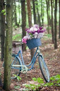 ༺✿ Flower Pedals ✿༻ ༺✿ Baskets of Flowers Riding Bicycles ✿༻ Baskets of Flowers Riding Bicycles