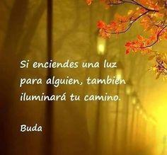 Esta frase atribuida a Budamuestra otra faceta de la iluminación: el compartir para recibir. Y si, es dando que se recibe, preocupándose por el otro que nos llega la gratitud, cuidando a los demás…