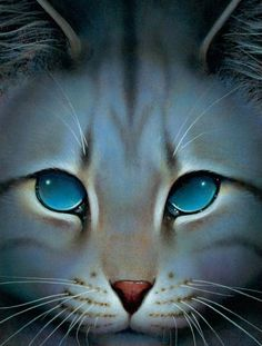 Official artwork of Jayfeather