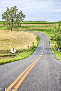 The long, curvy, country road. My Pennsylvania Tuscany.  by Jolly Sienda