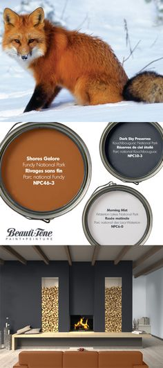 Winter blahs disappear with this colour palette inspired by Parks Canada and the Canadian Red Fox. Rustic Color Palettes, Paint Color Palettes, Paint Color Schemes, Paint Colors, Month Colors, Pallet Painting, Parc National, Cottage Design, Reno
